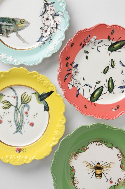 Natural World plates from Anthropologie