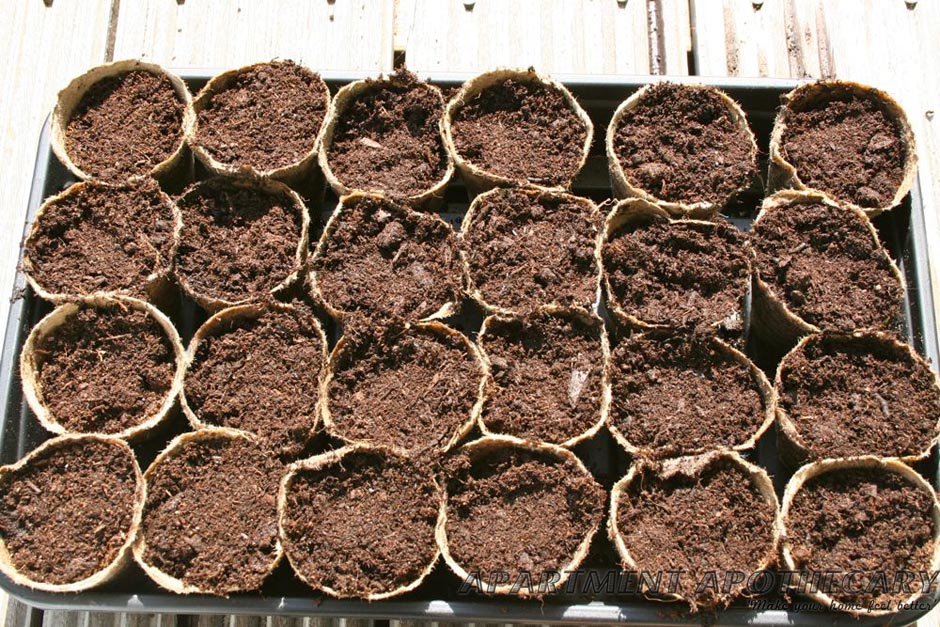 Compost in biodegradeable pots
