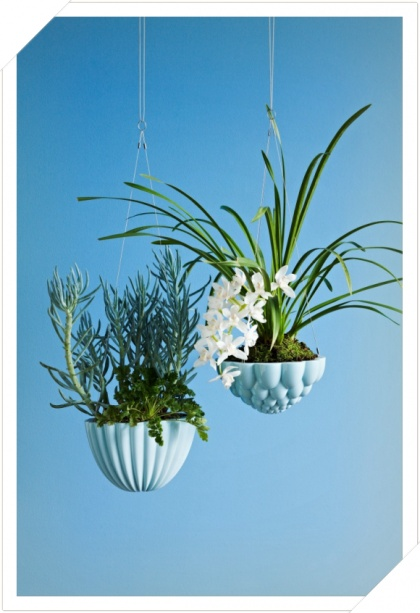 Angus and Celeste Hanging jelly mould planter blue