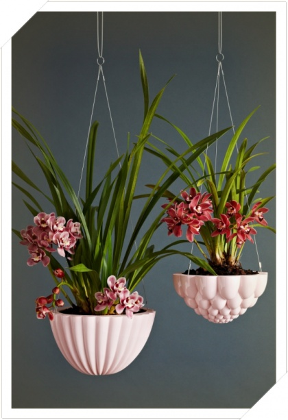 Angus and Celeste Hanging jelly mould planter pink