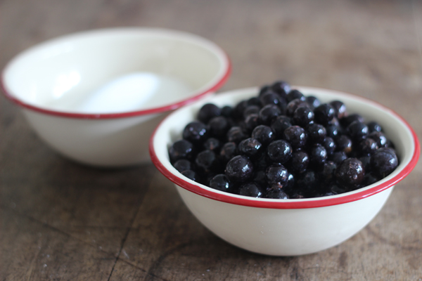 Make your own sloe gin | Growing Spaces