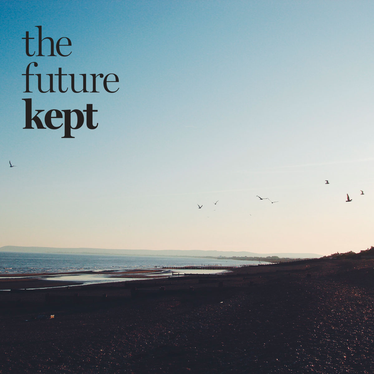 The Future Kept | Lobster and Swan