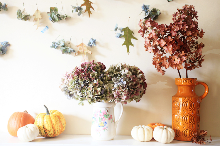 Styling the Seasons - October Review | Makelight