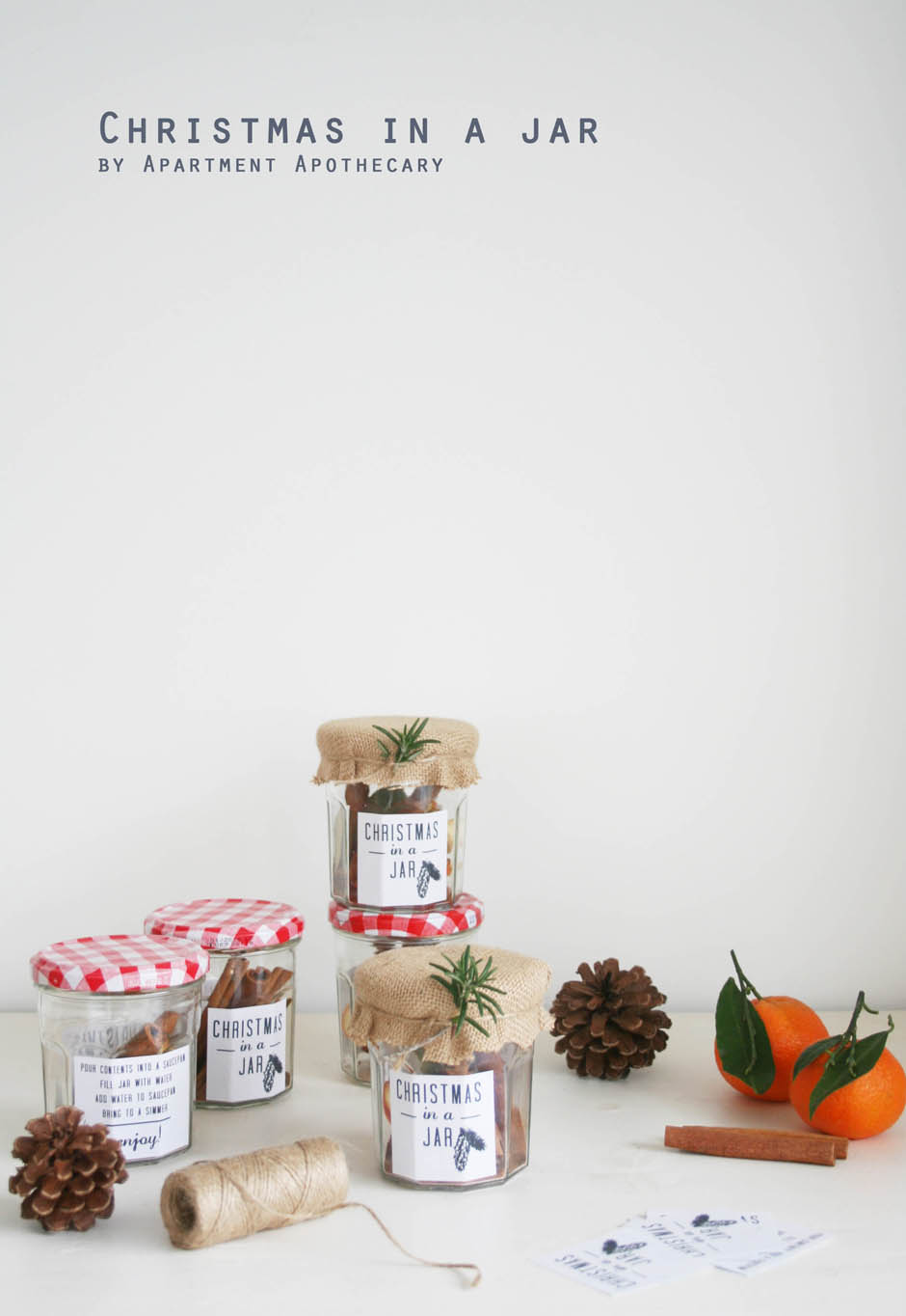 Christmas in a jar | Homemade Christmas present | Apartment Apothecary
