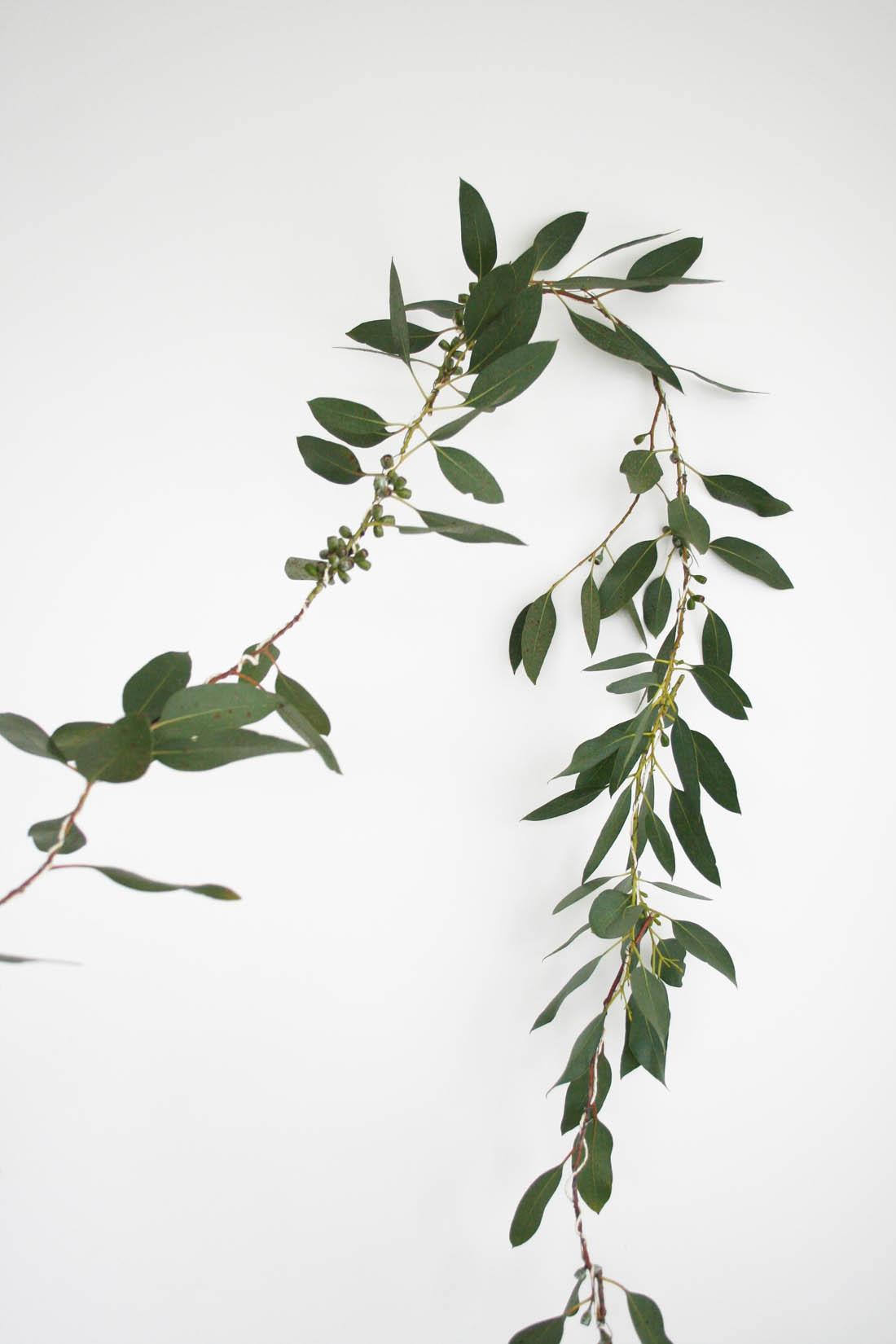 Natural Christmas garland | How to make a Eucalyptus garland | Apartment Apothecary