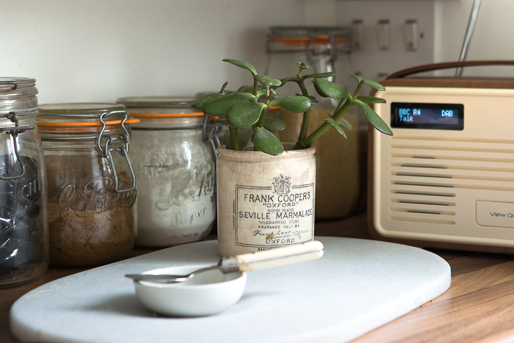 Urban Jungle Bloggers   Plants in kitchen   Plants in vintage pots   Apartment Apothecary   Photograph by Cathy Pyle