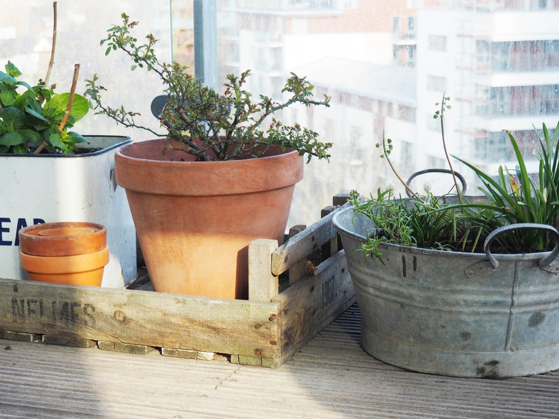 Balcony spring clean | Balcony planting | Apartment Apothecary