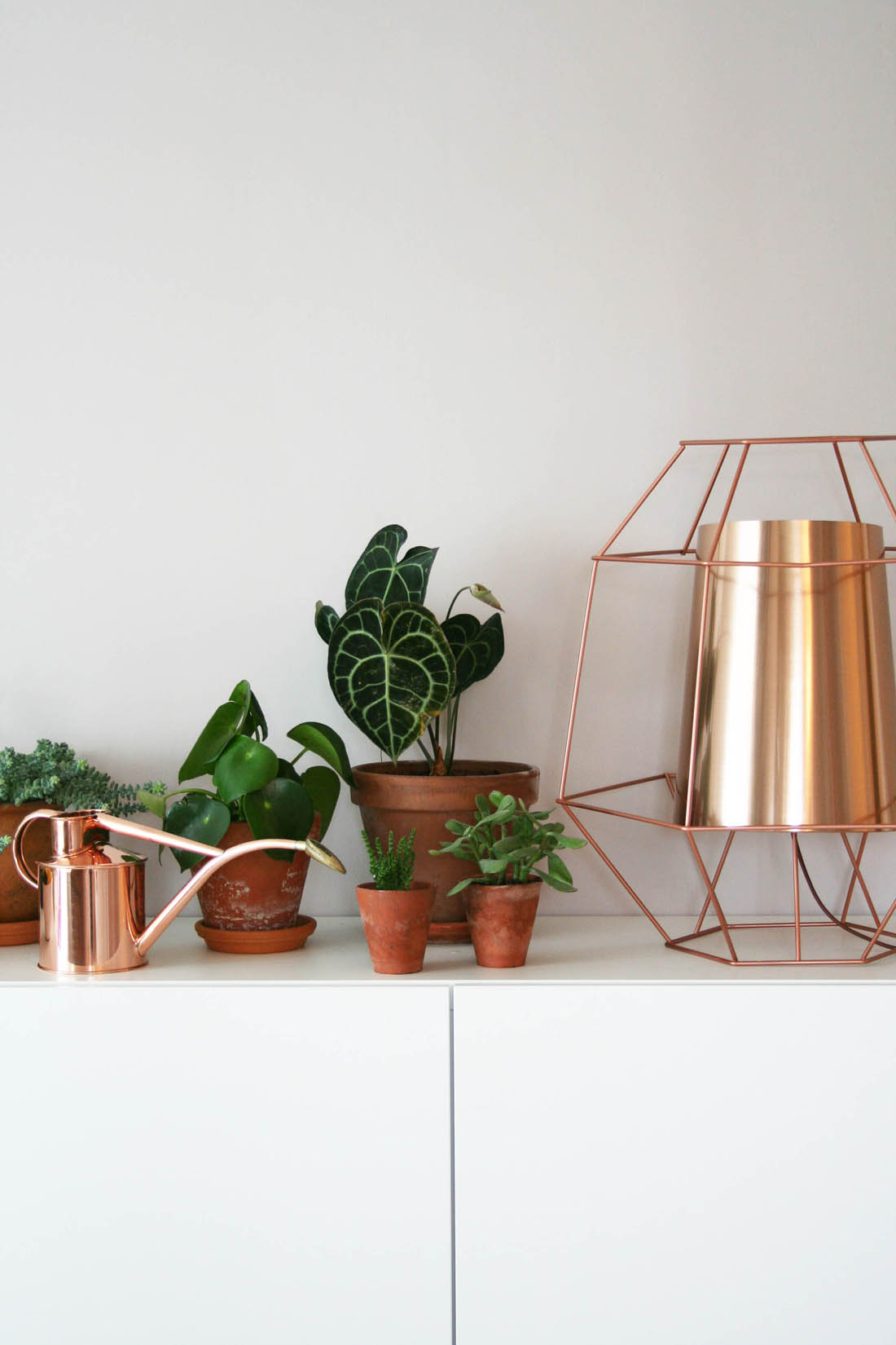 Dwell copper cage light | House plants | Copper watering can | Ikea Besta sideboard | Apartment Apothecary