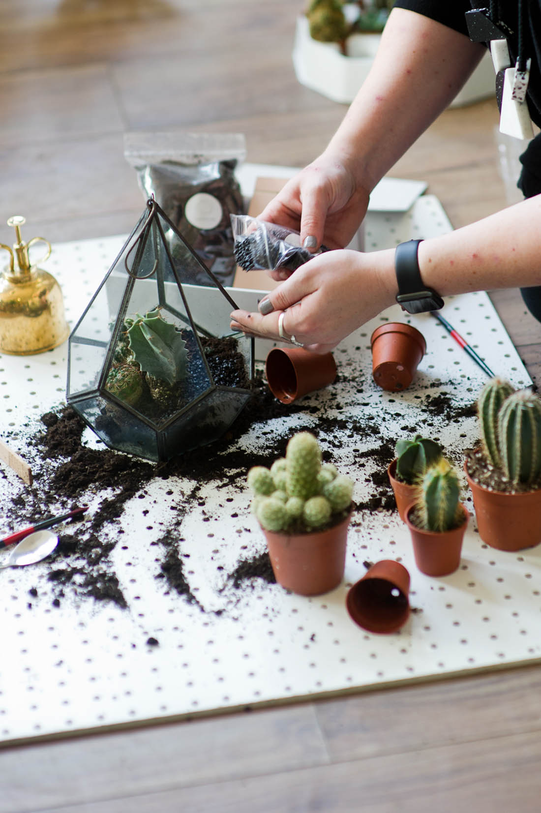 WIN £1000 to help to start your own Etsy shop | Etsy Hero: Sophie from geo-fleur | How to start a creative business | Botanical styling | Photograph by katharinepeachey.co.uk