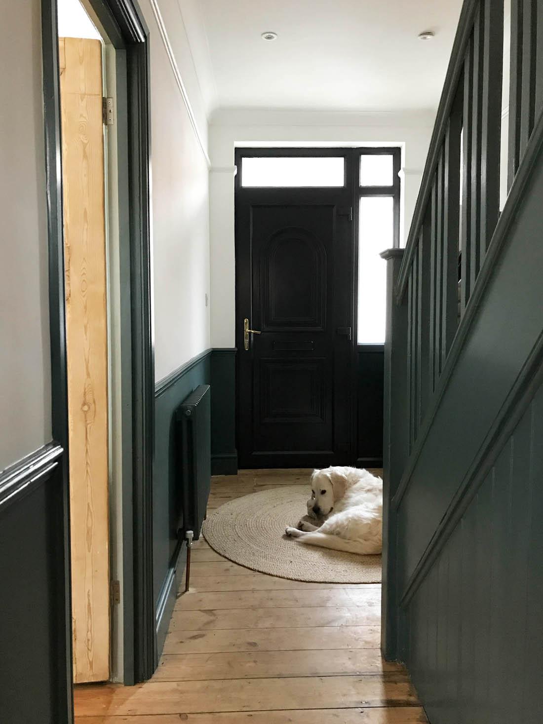 Ronseal uPVC primer on front door